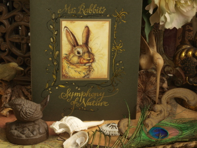 Mr. Rabbit's Symphony of Nature